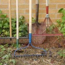 Outillage main soins et entretien jardin et maison for Cat entretien jardin