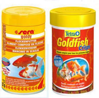 Nourrir son poisson rouge nourriture poissons d 39 eau for Petit poisson rouge
