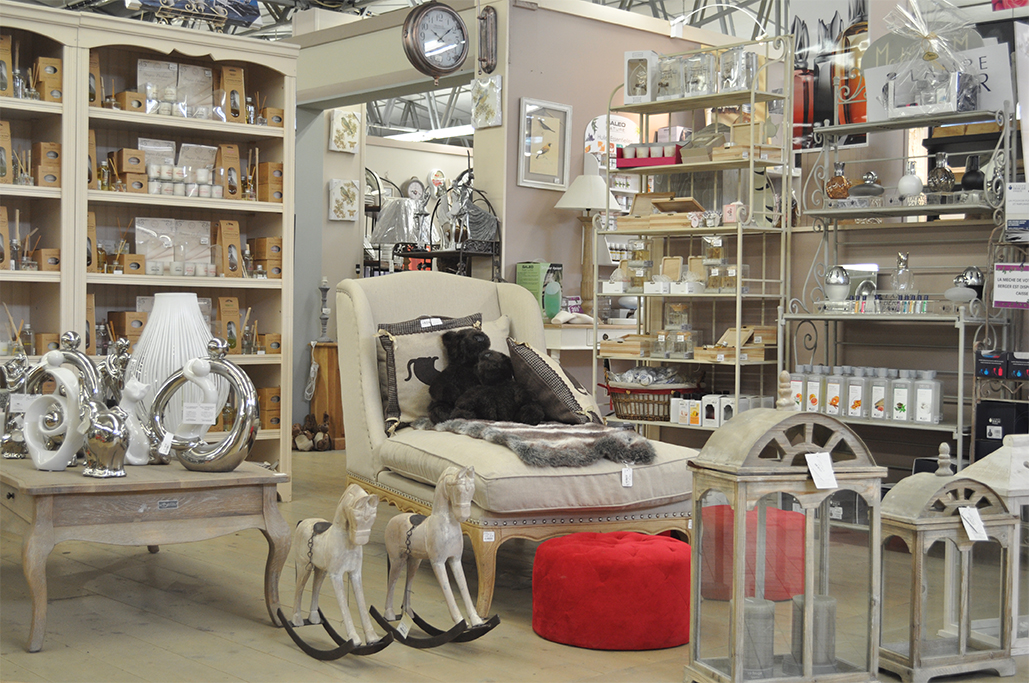 Visite guid e derly p pini res jardinerie animalerie for Agencement jardinerie occasion