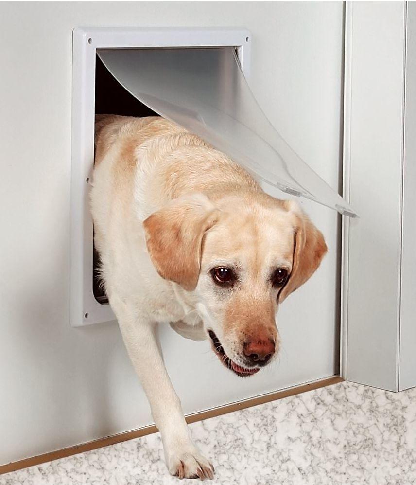 Niches Et Portes Battantes Niches Et Portes Pour Chiens Derly - Porte pour chien